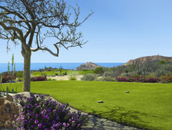 Palmilla Course Golf Course   Los Cabos  Mexico Prices