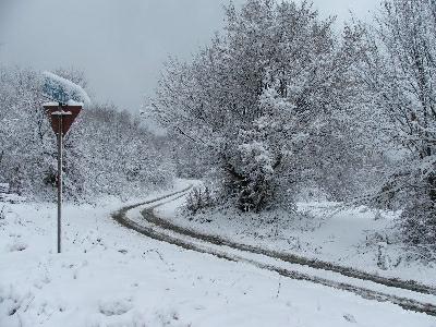 iarna-2008