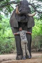Cabral si elefantul Timba (1 of 1)