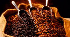 ¿Cómo preparar un Perfecto Espresso?