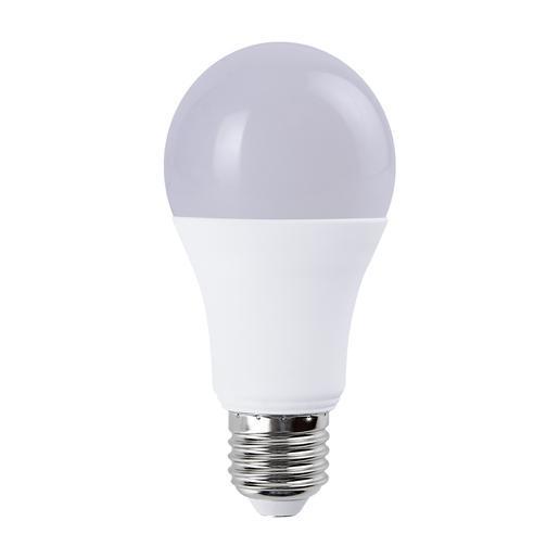 A19 LED 005 65 2
