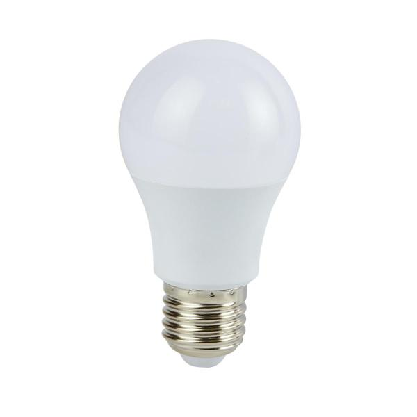 A19 LED 007 30