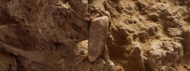 Arqueologa