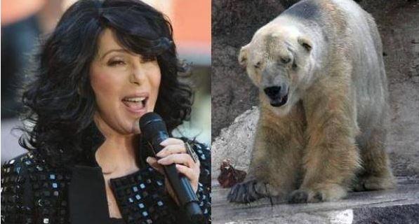 cantante cre vs presidenta de argentina
