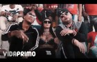 Tempo & Quimico Ultra Mega – Los Capos No Mueren (Official Video) #Cacoteo @Cacoteo