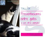 Taller Presentaciones entre gatos y con otros animales