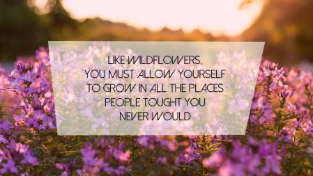 bloemen-quote
