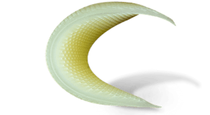 Elastomeric