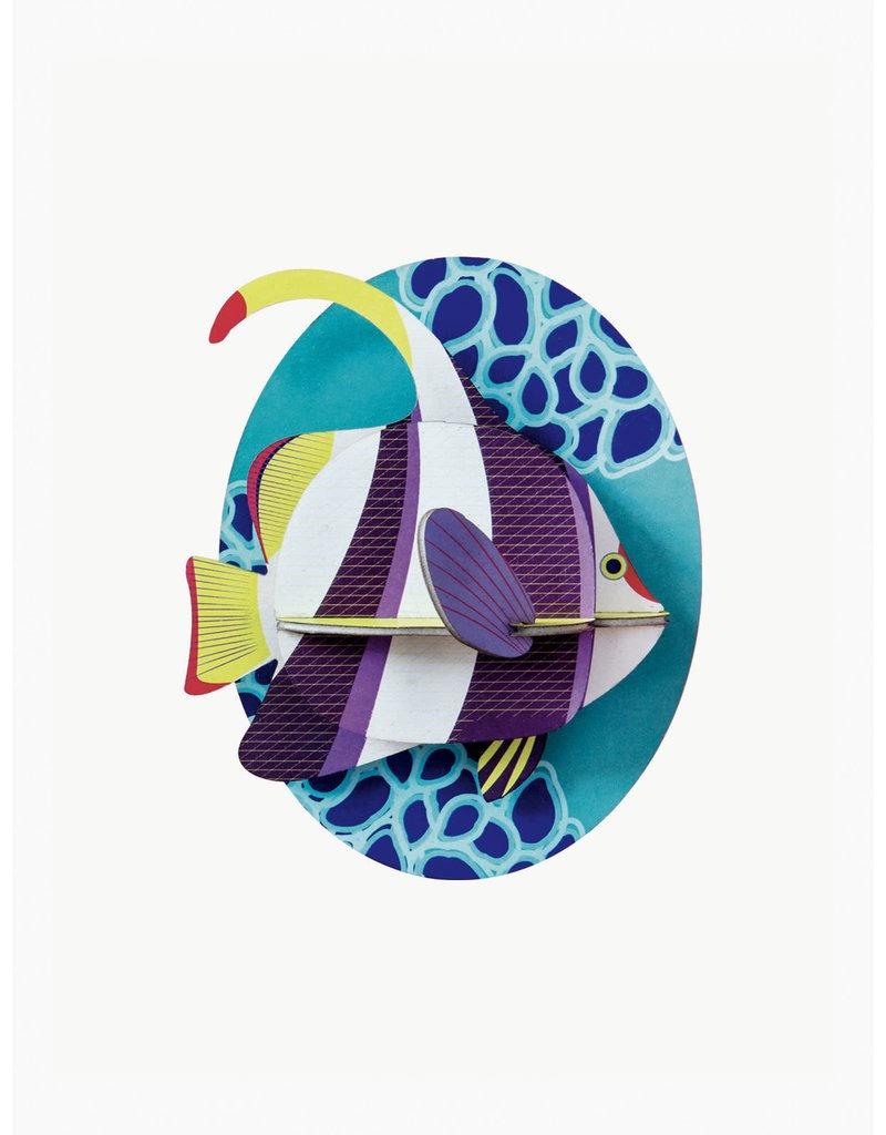 studio-roof-sea-animals-marine-angelfish
