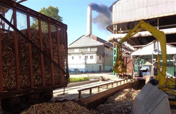 Camagüey transporta por ferrocarril mayor volumen de caña de azúcar (+ Audio)