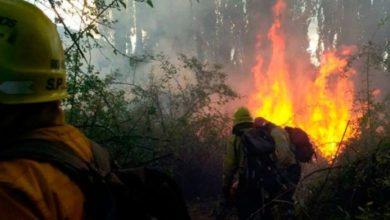 Photo of Incendio en Río Negro: al menos 6.500 hectáreas fueron afectadas