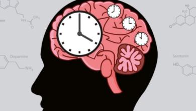 """Photo of """"Mi reloj interno"""", la app creada por argentinas que ayuda a mejorar el descanso"""