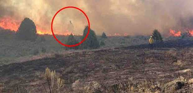 Fantasma incendio forestal