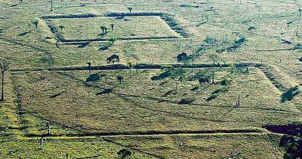 drone-amazonas