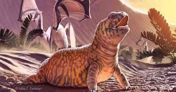 vida-252-millones-de-anos