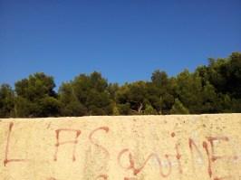 Sur les flancs de la Mûre - La Savine - Marseille 15e