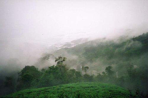 Cameron Highlands, Pahang Maleisië