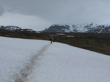 Kungsleden snowfield