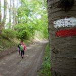 Grote Routepaden Bierbeek