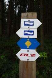 Escapardenne Eisleck Trail 1845