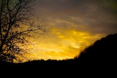 Mullertal Trail 2021