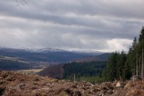 Affric Kintail
