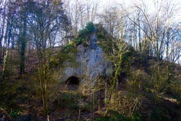 grot van Coléoptère