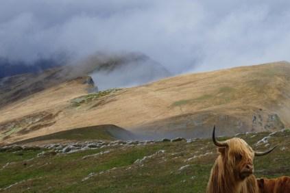 Détour par les Highlands
