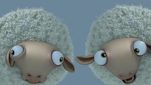 Holly Sheep - Um pastor e suas ovelhas