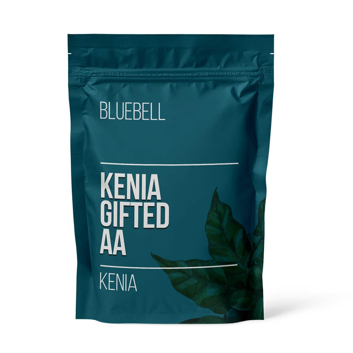 BlueBell – Kenia Gifted AA