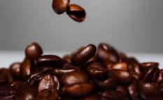コーヒーの仕事