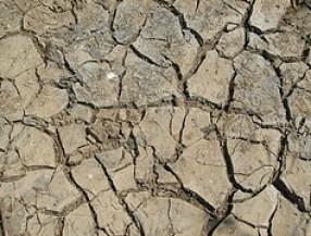sequía photo