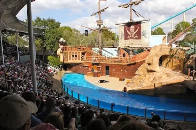 O show dos leões marinhos
