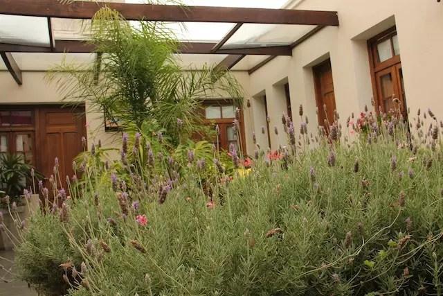 jardim interno do hotel