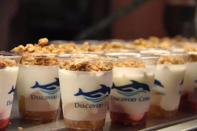 Eu podia passar o dia comendo esse iogurte com cereais e frutas vermelhas ao fundo.