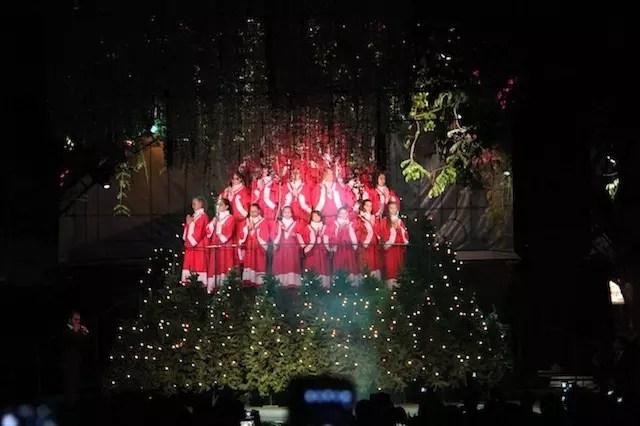 Árvore Cantante – atração gratuita do Natal Luz na Rua Coberta às 20h