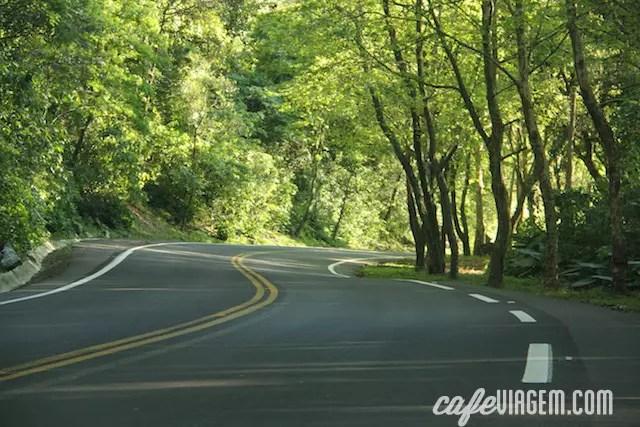 Assim é como a estrada fica na primavera!
