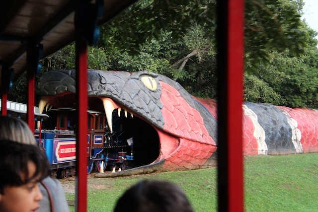 Beto Carrero World (266)