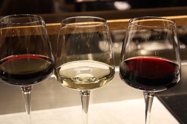 Vinhos Chile (15)
