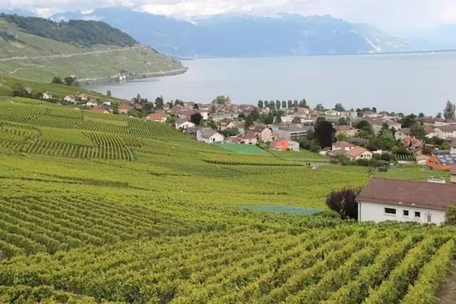 Roteiro-vinhedos-Lavaux-Suica-11