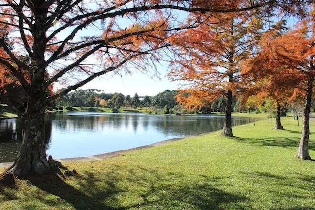 Se o tempo tiver bom, a gente vai tirar muitas fotos nesse lago lindo da área do hotel !
