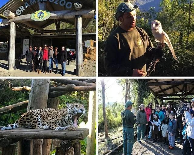 Última atração já no caminho para POA: Zoo!