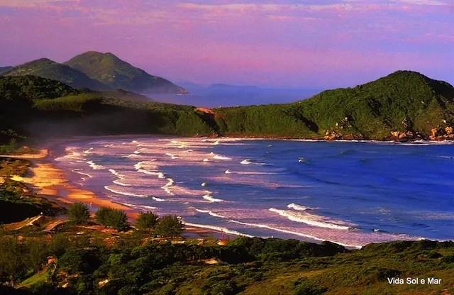 Praia do Rosa (foto divulgação)