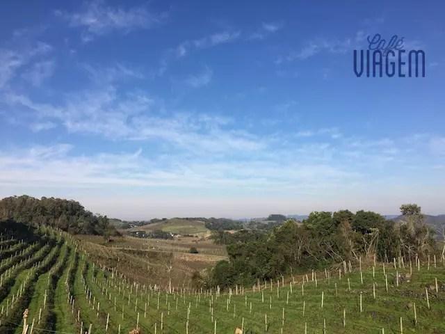 visual na saída da estrada da vinícola rumo a Monte Belo do Sul