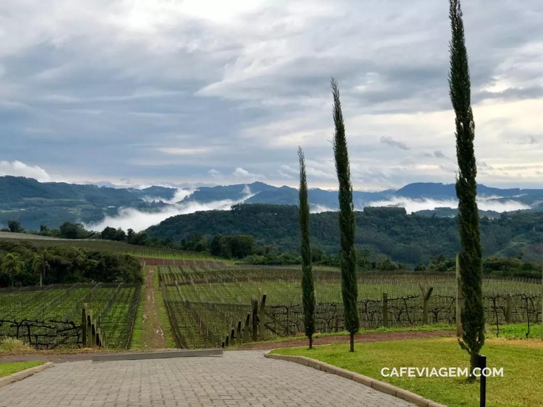 vinícola Don Guerino