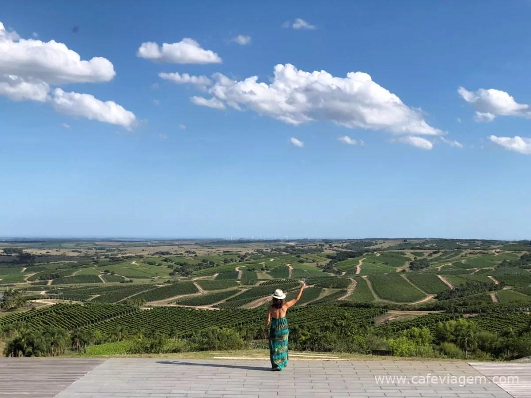 melhores vinícolas do mundo
