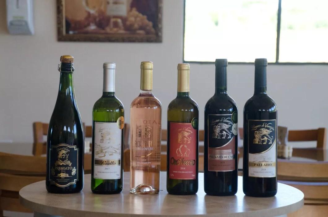vinhos Leone di Venezia