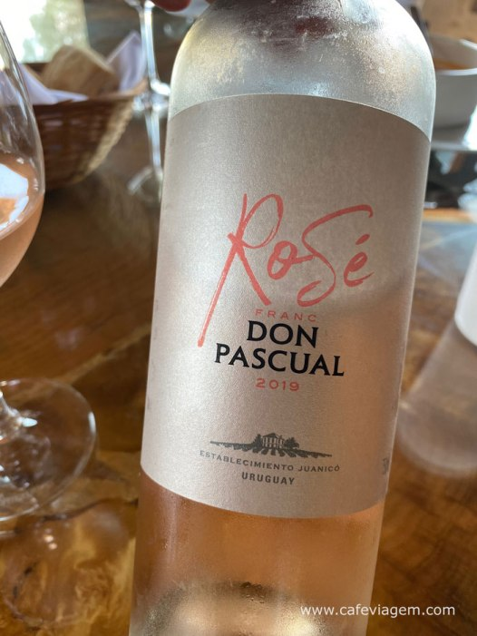 Coastal Don Pascual rose