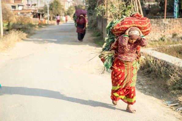 caffealvolo_donna_lavoro_nepal