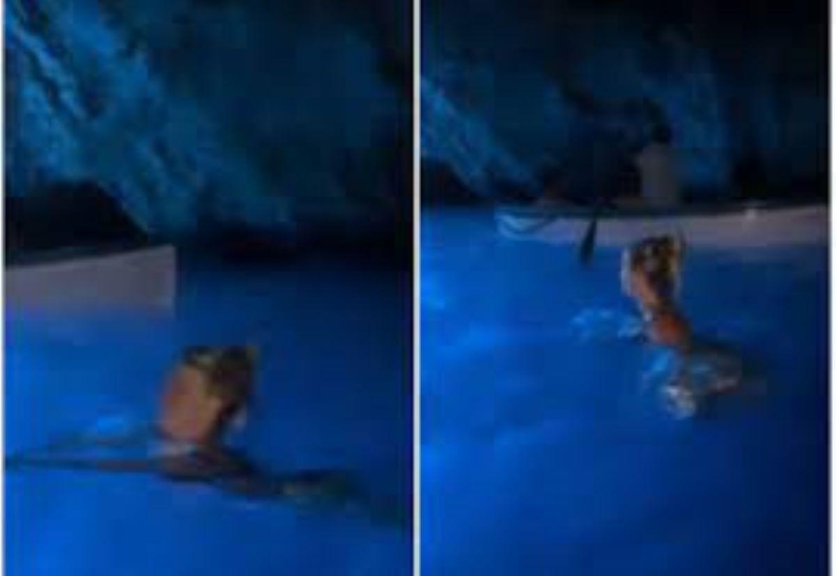 Wanda Nara Bagno Grotta Azzurra Capri Vietato Multa 3 mila euro